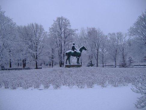 Tiegarten no inverno - Berlim - Alemanha